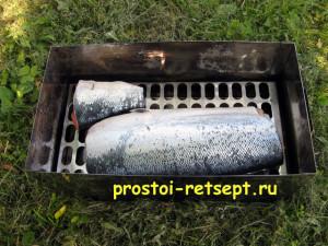как коптить рыбу: кладем рыбу на решетку