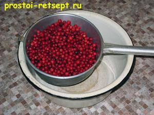 моченая брусника: отбираем и моем ягоды