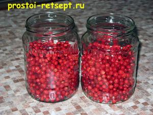 моченая брусника: засыпаем ягоды в банки