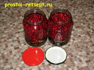 моченая брусника: заливаем ягоды сиропом